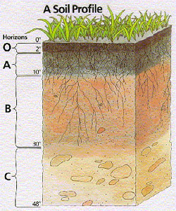mekanika tanah