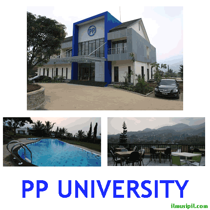 pp university